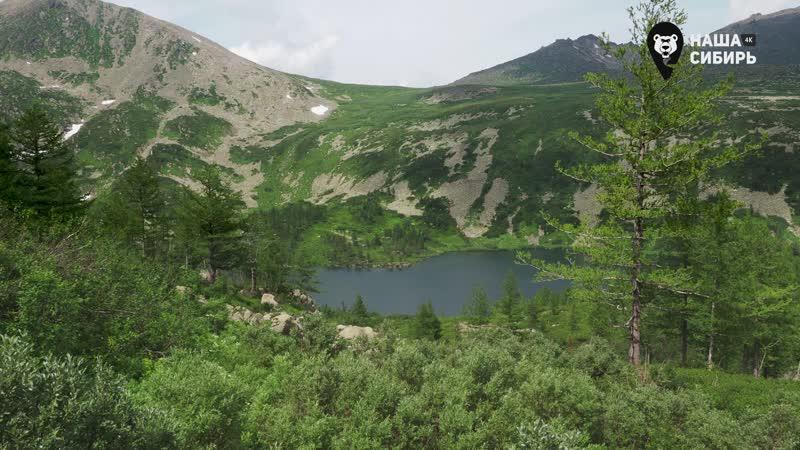 Наедине с природой Наша Сибирь 3