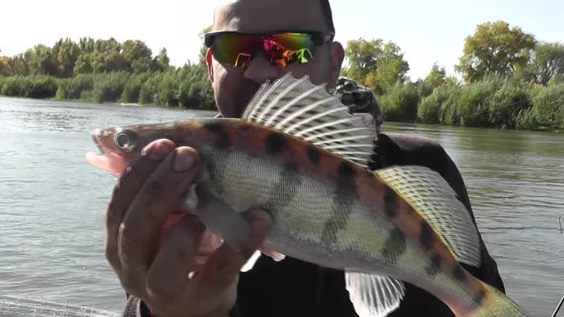 18 Рыбалка началась р Ахтуба и р Ашулук осень 2020г