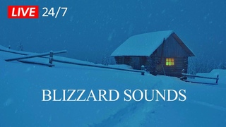 🔴  ❄ Blizzard Sounds w/ Howling Winds | Winter Ambience Sounds for Sleeping, Relaxing & Spa