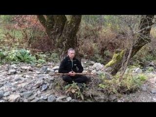 Императорский цигун. Техника медитации в агрессивной среде.