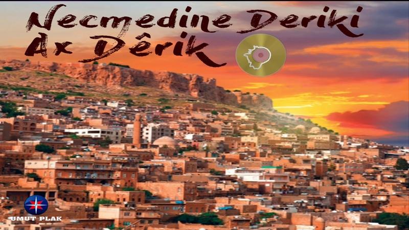 Tek Kelimeyle Harika Dertli Saz Eşliğinde Kürtçe Damar Türküler Stranên Kurdî Official Audio✔️