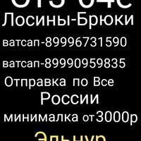 Шукюров Эльнур