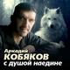 Аркадий Кобяков - ветер унесет