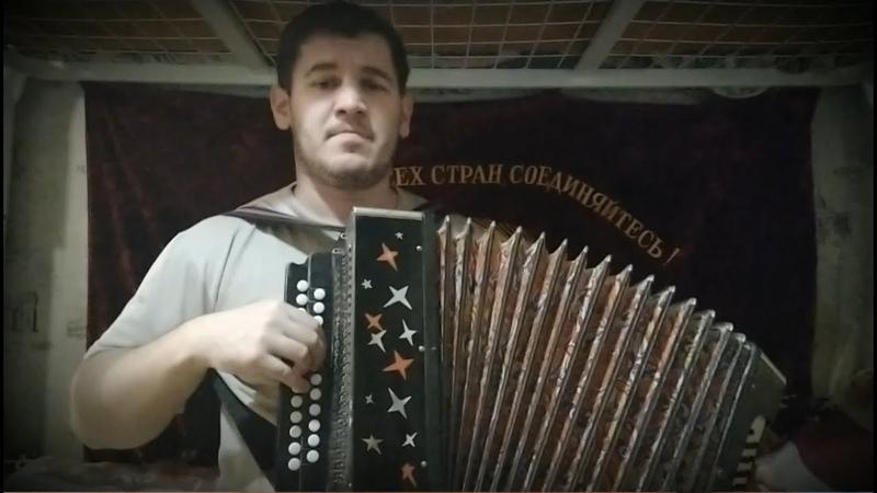 Белая черёмуха - Марина Журавлёва под гармонь! (исп. Владислав Городков).