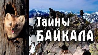 Путь к чистому Байкалу / Бурятия 2021 / Чивыркуйский залив / Сибирь /Забайкальский национальный парк