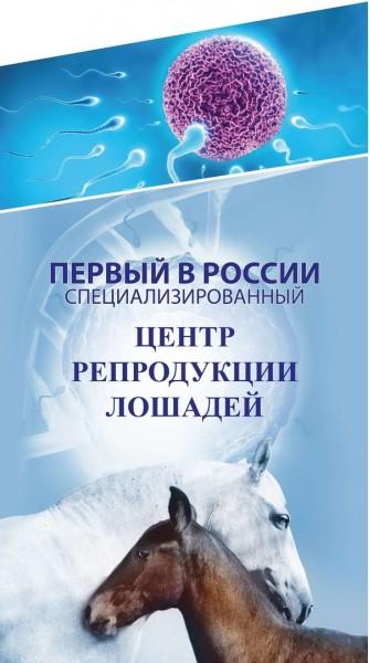 Содержание маток и жеребят Московская область