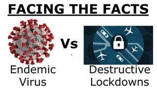Oct 20th Shocking Data - Endemic Virus versus Damaging Lockdowns - YouTube