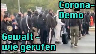 Wie bestellt – die Gewalt bei der Corona–Demo in Leipzig