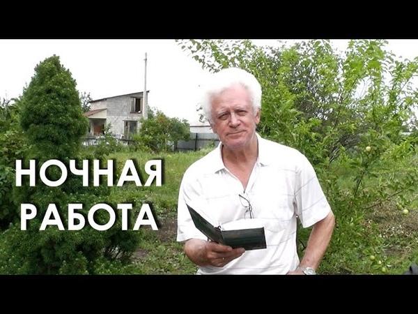 Александр Телегин читает Арсения Тарковского Ночная работа