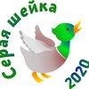 Зимний учёт водоплавающих птиц-2020
