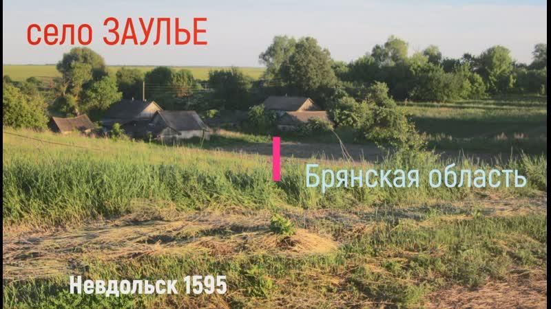 История села Заулье до 1903 года Мастера колес богатые пчеловоды и пахари благоприятной земли