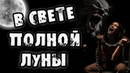 Страшные истории на ночь В СВЕТЕ ПОЛНОЙ ЛУНЫ Страшилки на ночь