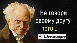 Цитаты Шопенгауэра, к которым Стоит Прислушаться. | Цитаты, афоризмы, мудрые мысли.