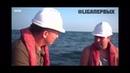 Компания Greenway стала партнёром научно-экологического центра спасения дельфинов в России ДЕЛЬФА