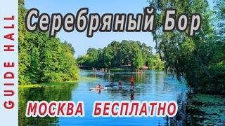 Серебряный Бор в Москве - лучшие бесплатные пляжи где можно купаться. Озера, пикники, велодорожки!