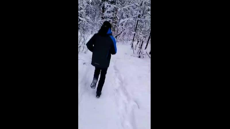 Джим и Фингер пытаются выбежать из леса 3 минуты 55 секунд