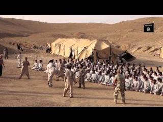 Учебный лагерь ИГилойдов