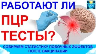 Работают ли ПЦР тесты? Побочные эффекты вакцинации