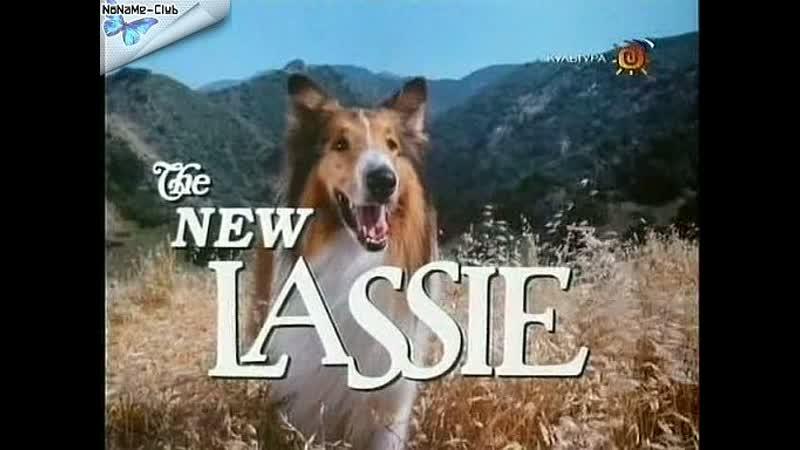 Новые приключения Лесси(1989–1991) серии 31-36