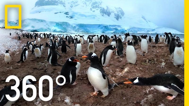 360° Antarctica Unexpected Snow National Geographic
