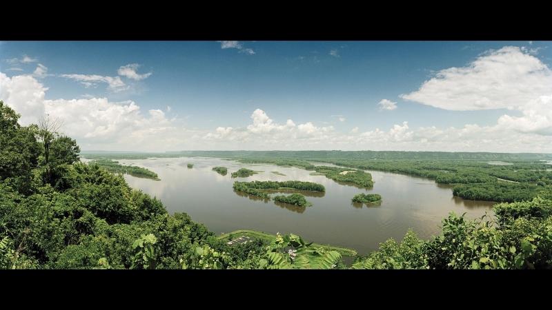 Дикая природа Миссисипи 2011
