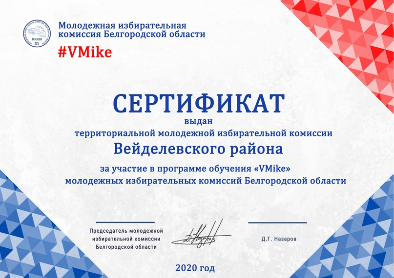 Итоги программы обучения молодежных избирательных комиссий Белгородской области «VMike», изображение №17