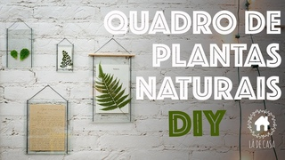 DIY | PLANTAS NA DECORAÇÃO | Para pendurar na parede!