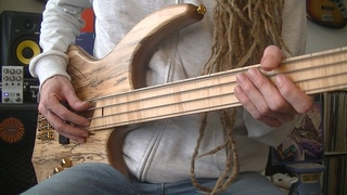 Funky Upbeat Fretless Bass Grooves with Delay