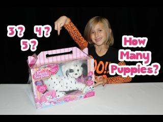 Puppy Surprise Toy Gigi The Dalmatian Christmas 2014