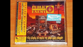 Public Enemy - What You Gonna Do When The Grid Goes Down?  in JAPAN Диск был запечатан.нов.