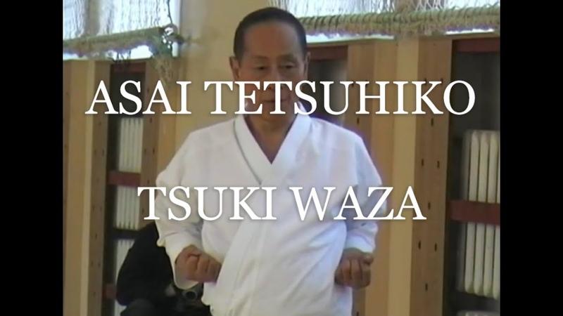 Asai Tetsuhiko 10 dan Shotokan karate tsuki waza