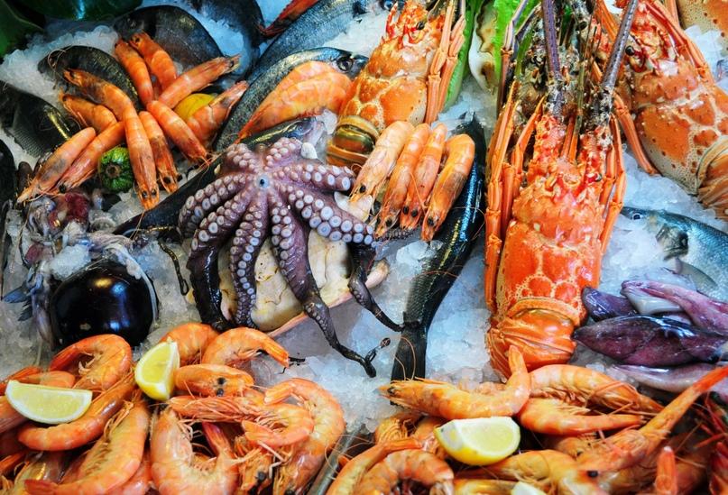 Интересные и полезные свойства морепродуктов, изображение №1
