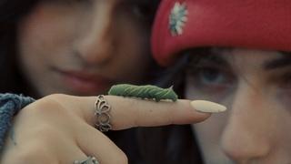 aldn, renforshort - dog eat dog (official music video)