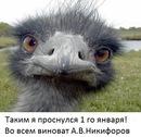Личный фотоальбом Алексея Степанова
