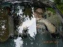Личный фотоальбом Светланы Изотовой