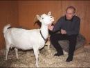 Личный фотоальбом Евгения Лазаренко