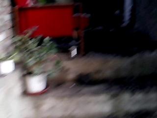 """""""доблестная"""" национальная гвардия бомбит мирных жителей, прямое попадание снаряда в мой дом"""