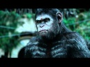Best Scene in Dawn of the planet apes