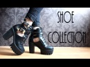 Shoe Collection Roxxsaurus