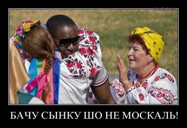 """Нардеп Беленюк показав, що робити депутатам, коли хапають за сорочку і називають """"скотинякою"""" - Цензор.НЕТ 2071"""