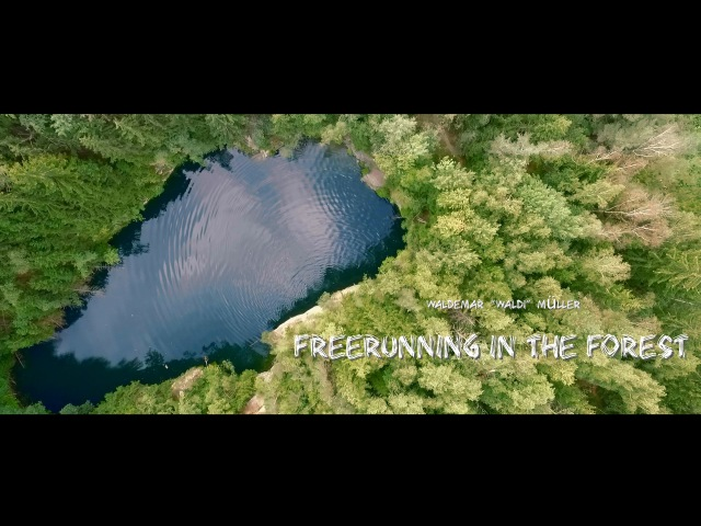 Freerunning in the Forest official Full Video Waldemar 'Waldi' Müller