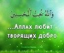 Фотоальбом Альбины Дильмухаметовой