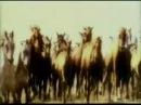 Türk Tarihi Belgesel Filmi