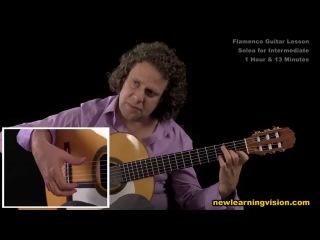Demo of Flamenco Guitar Lesson, Solea for Intermediate by Adam del Monte