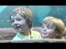 Реклама Киндер шоколад Макси - Ваш малыш вырос