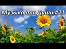Волшебная композиция Поль Мориа История любви Красивая музыка для души