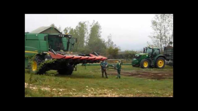 Kukorica betakarítás 2015