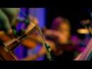 The Divine Comedy - Our mutual friend (14 19 Live @ The London Palladium)
