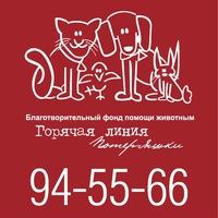 """Логотип БФПЖ """"ГЛ """"Потеряшки"""". Помощь животным Тюмени"""
