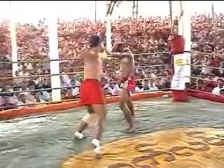BRUTAL FIGHT Burma